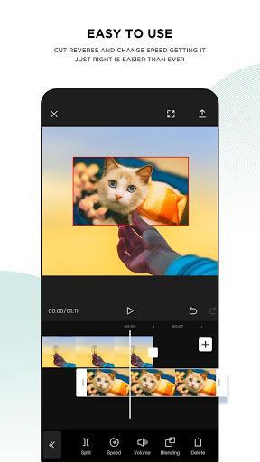 CapCut - Video Editor – ویرایش فیلم کپ کات - عکس برنامه موبایلی اندروید