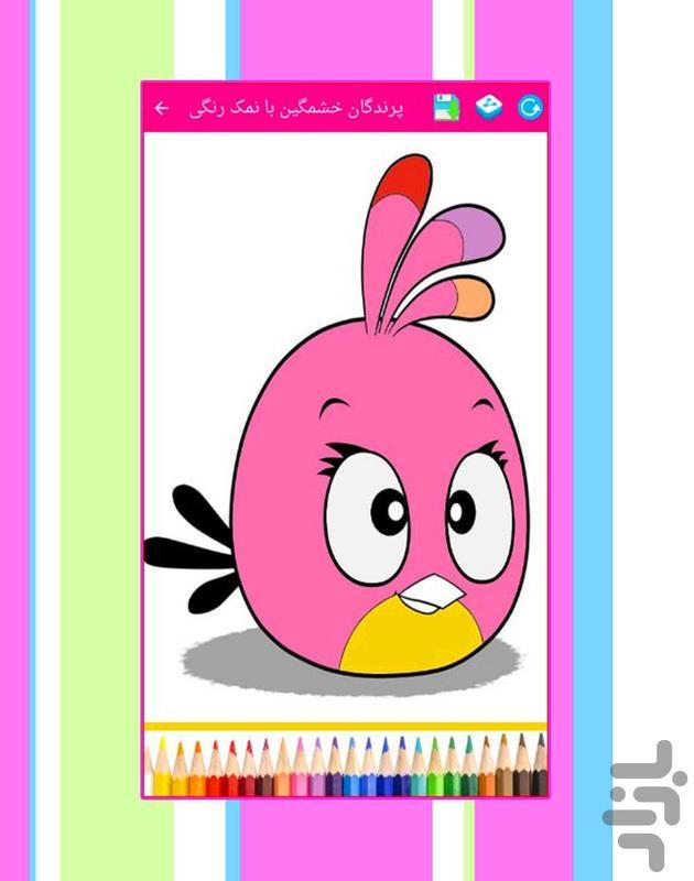 پرندگان خشمگین با نمک رنگی - عکس بازی موبایلی اندروید