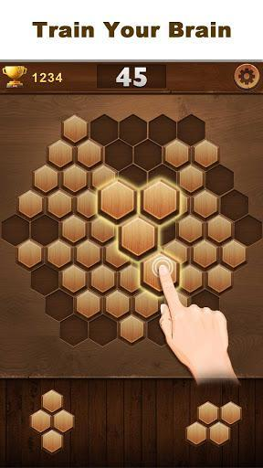Wood Block Hexagon - عکس بازی موبایلی اندروید