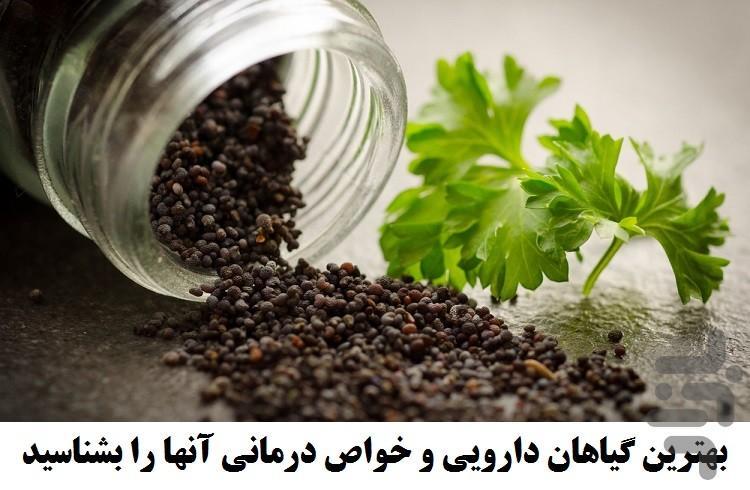 داروخانه داروهای گیاهی - عکس برنامه موبایلی اندروید