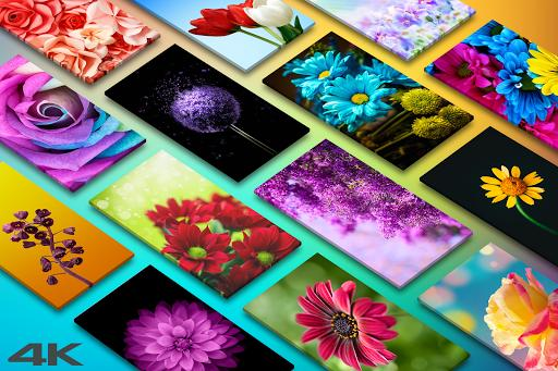Flower Wallpapers - Colorful Flowers Backgrounds - عکس برنامه موبایلی اندروید