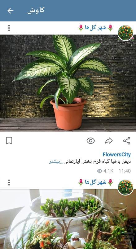 پیام رسان ایتا - عکس برنامه موبایلی اندروید