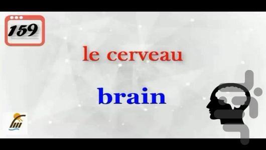 آموزش 500 لغت رایج در زبان فرانسوی - عکس برنامه موبایلی اندروید
