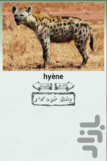 آموزش سه زبانه اسم و صدای حیوانات - عکس برنامه موبایلی اندروید