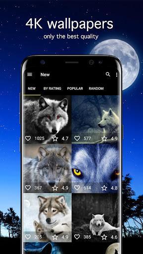 Wolf Wallpapers 4K - عکس برنامه موبایلی اندروید